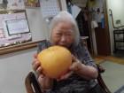 大きい梨だー!!食欲の秋!実りの秋!ということで、皆さんで美味しく頂きました♡笑