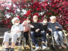 3.農事センターにバラを見に行きました(^O^)/人も少なく、バラも満開で皆さん喜んでくださいました!