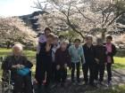 桜満開!!笑顔満開♪