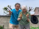 ⑥庭の畑でジャガイモ掘り☆