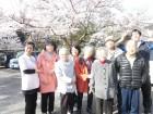 桜の花見ドライブ♪