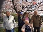 蒲生の桜も綺麗です(^◇^)