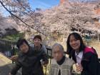 《お花見》志井川沿いの桜並木を見物に行きました(^^♪今年もキレイに咲きました❤