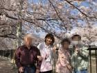 桜橋の桜道は気に手が届きます(^_-)-☆